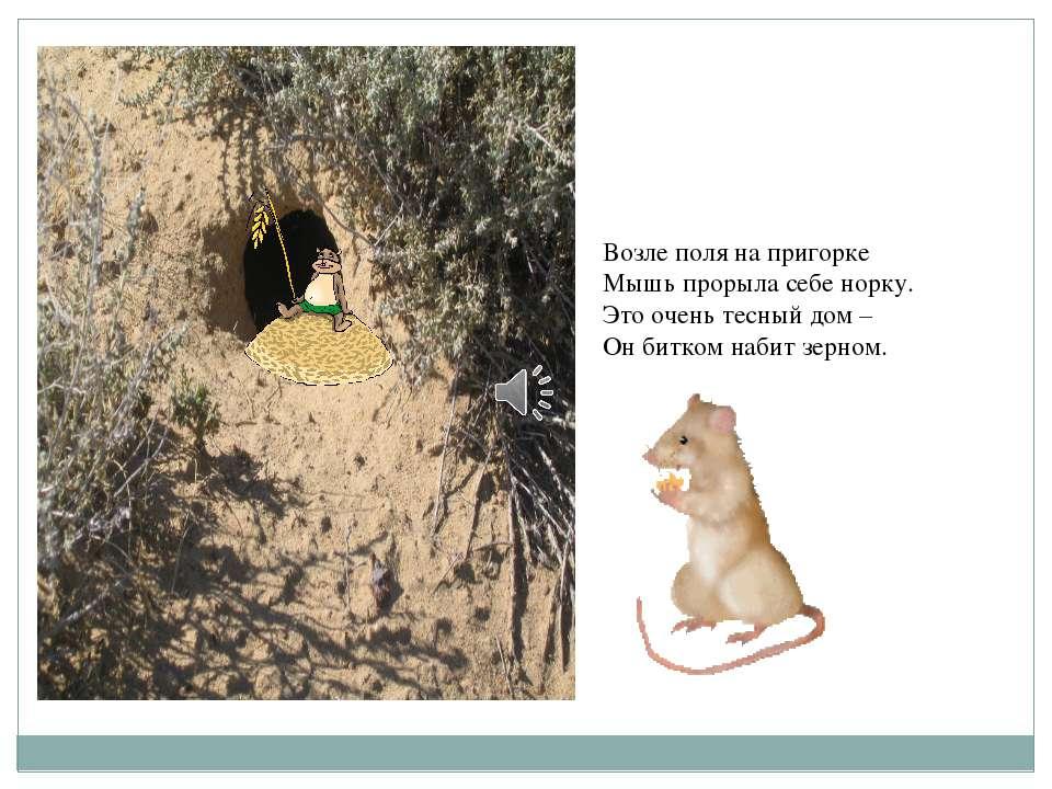 Возле поля на пригорке Мышь прорыла себе норку. Это очень тесный дом – Он бит...