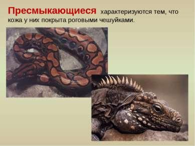 Пресмыкающиеся характеризуются тем, что кожа у них покрыта роговыми чешуйками.