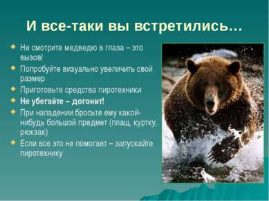 И все-таки вы встретились… Не смотрите медведю в глаза – это вызов! Попробуйт...