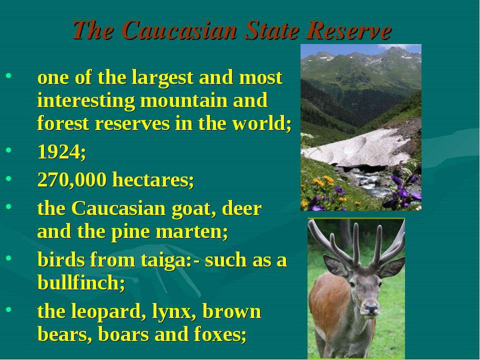 The Caucasian State Reserve one of the largest and most interesting mountain ...