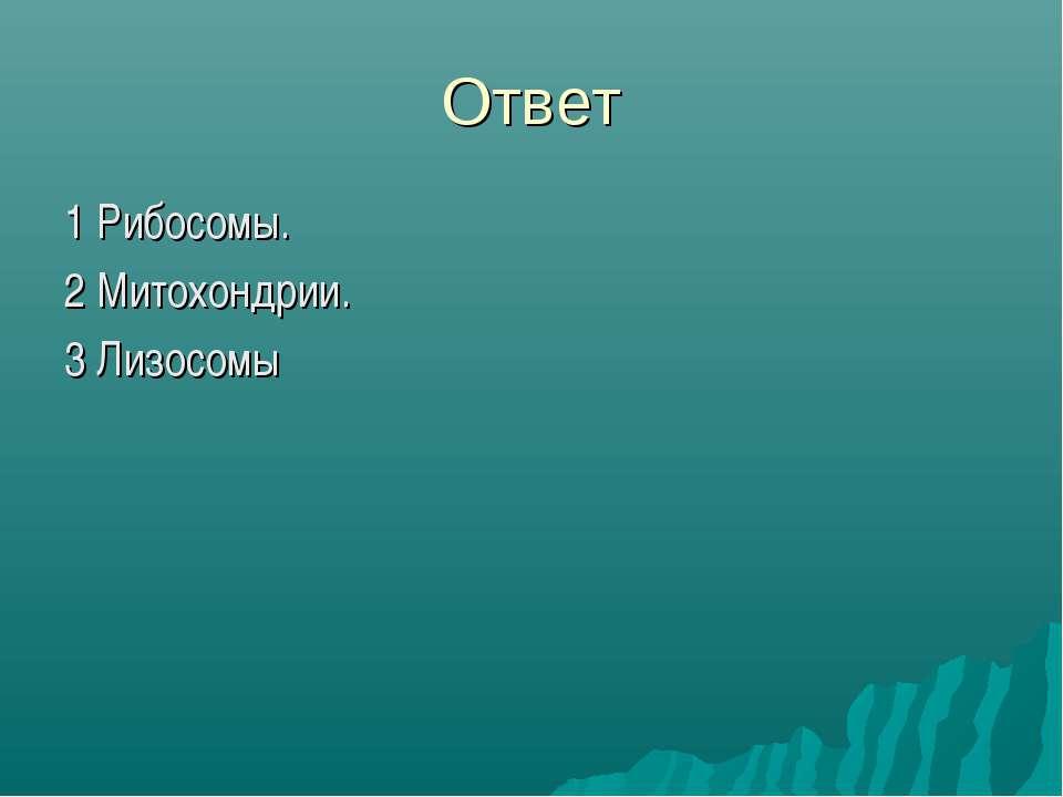 Ответ 1 Рибосомы. 2 Митохондрии. 3 Лизосомы