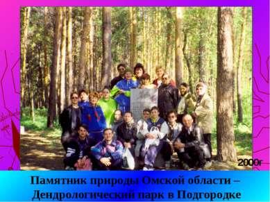 Памятник природы Омской области – Дендрологический парк в Подгородке 2000г