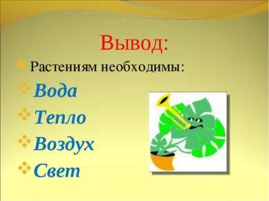 Вывод: Растениям необходимы: Вода Тепло Воздух Свет