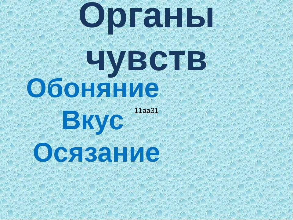Органы чувств Обоняние Вкус Осязание 11aa31