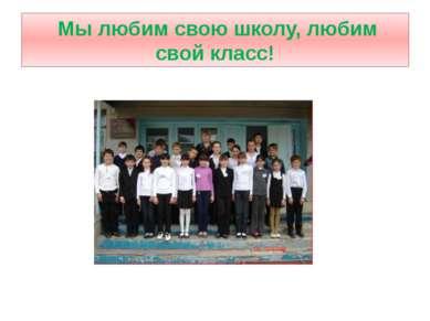 Мы любим свою школу, любим свой класс!