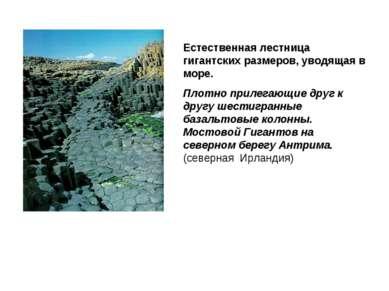 Естественная лестница гигантских размеров, уводящая в море. Плотно прилегающи...