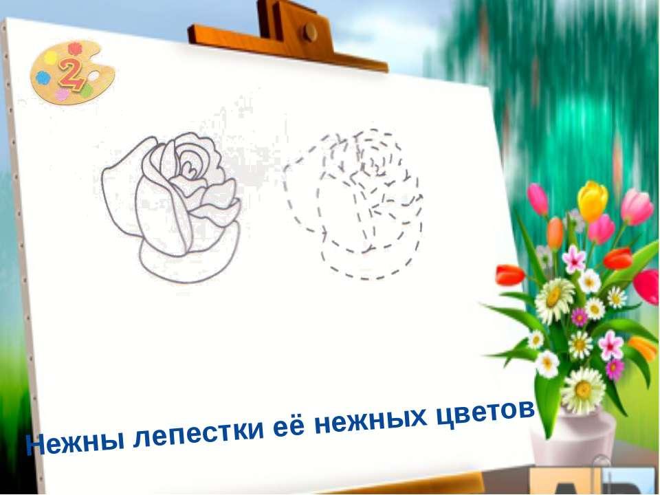 Шипы королевскую розу хранят