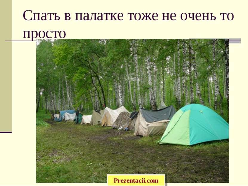 Спать в палатке тоже не очень то просто Prezentacii.com