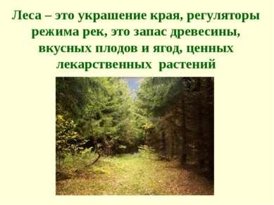 Леса – это украшение края, регуляторы режима рек, это запас древесины, вкусны...