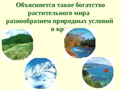 Объясняется такое богатство растительного мира разнообразием природных услови...