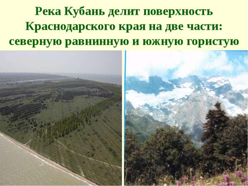 Река Кубань делит поверхность Краснодарского края на две части: северную равн...