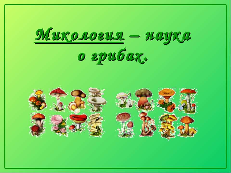 Микология – наука о грибах.