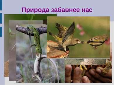 Природа забавнее нас