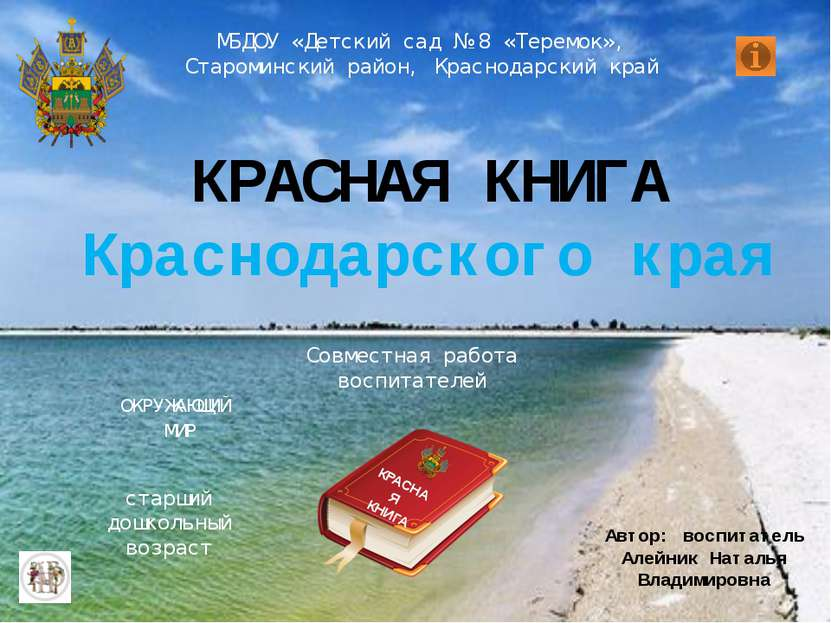 МБДОУ «Детский сад № 8 «Теремок», Староминский район, Краснодарский край Авто...
