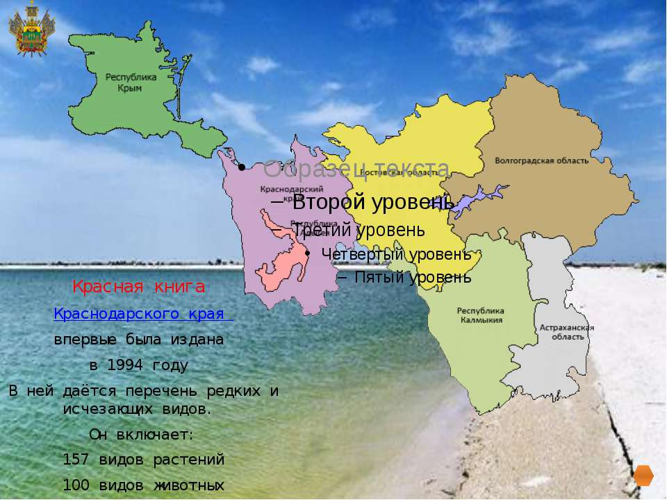 Красная книга Краснодарского края впервые была издана в 1994 году В ней даё...