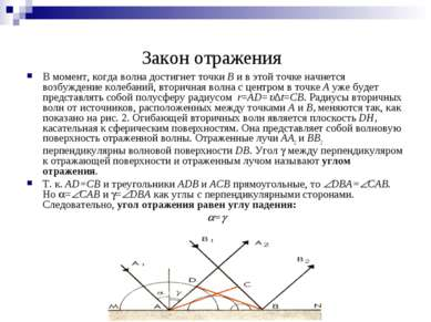 Закон отражения В момент, когда волна достигнет точки B и в этой точке начнет...