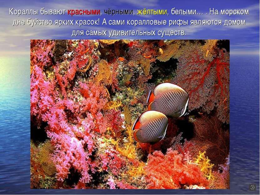 Кораллы бывают красными, чёрными, жёлтыми, белыми… . На морском дне буйство я...
