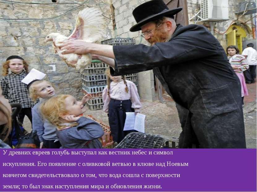 У древних евреев голубь выступал как вестник небес и символ искупления. Его п...