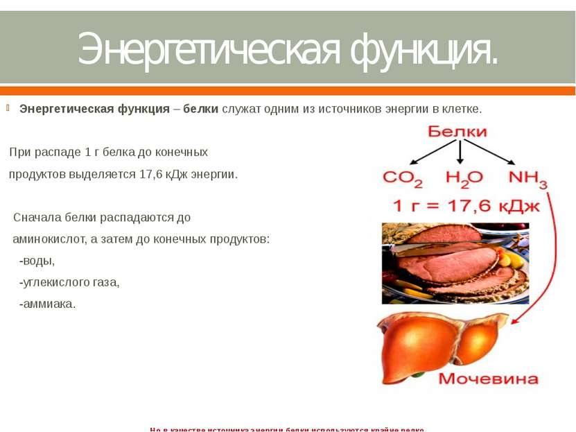 Энергетическая функция. Энергетическаяфункция–белкислужат одним из источн...