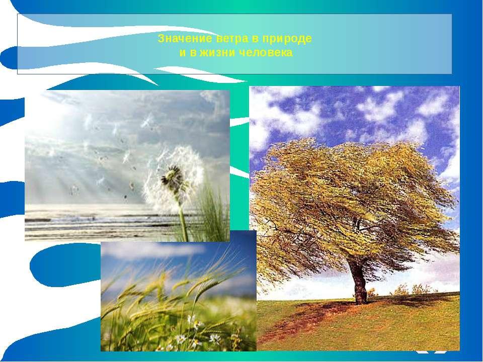 Значение ветра в природе и в жизни человека