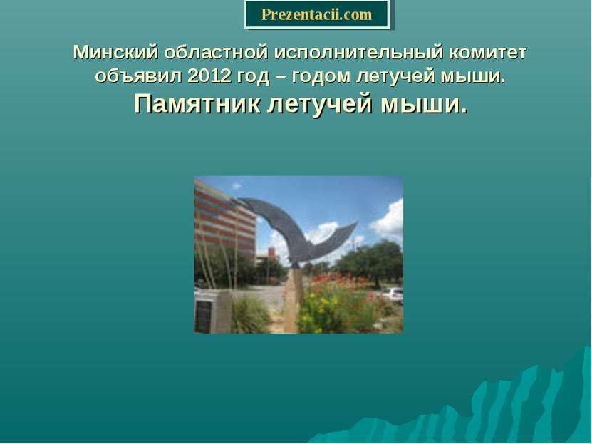 Минский областной исполнительный комитет объявил 2012 год – годом летучей мыш...