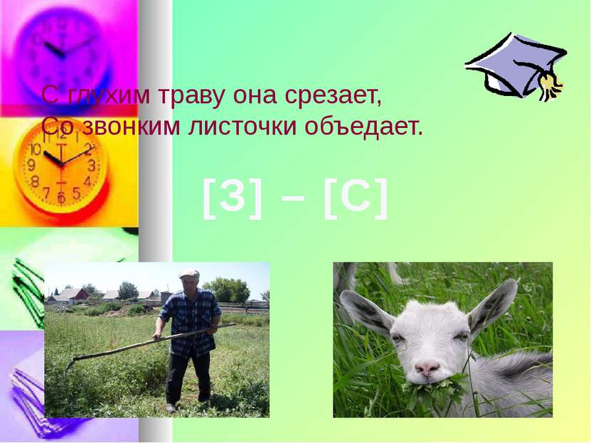 С глухим траву она срезает, Со звонким листочки объедает. [З] – [С]