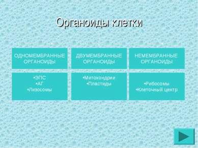 Органоиды клетки ОДНОМЕМБРАННЫЕ ОРГАНОИДЫ ДВУМЕМБРАННЫЕ ОРГАНОИДЫ НЕМЕМБРАННЫ...