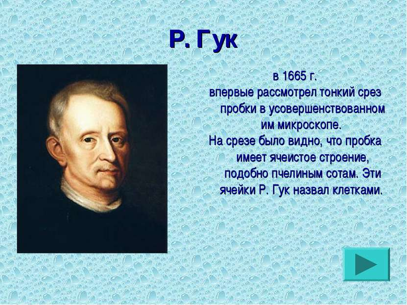 в 1665 г. впервые рассмотрел тонкий срез пробки в усовершенствованном им микр...