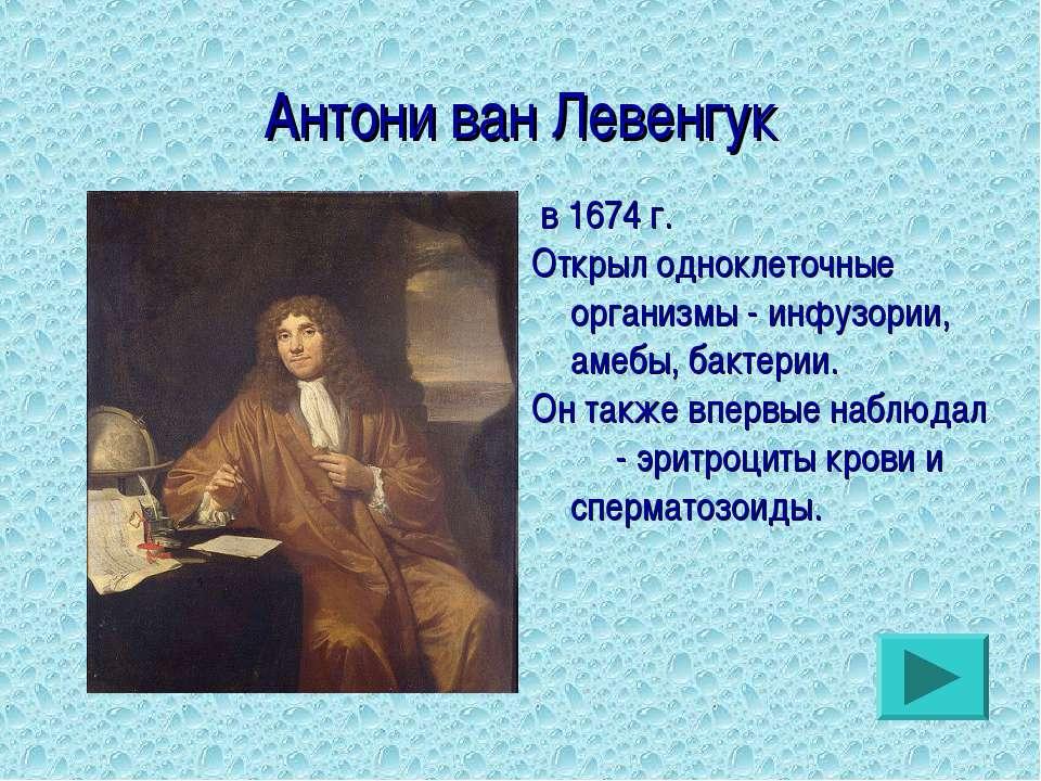 Антони ван Левенгук в 1674 г. Открыл одноклеточные организмы - инфузории, аме...