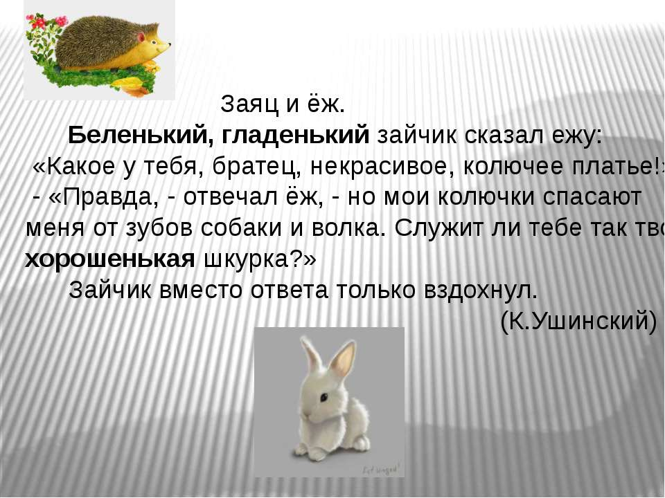 Заяц и ёж. Беленький, гладенький зайчик сказал ежу: «Какое у тебя, братец, не...