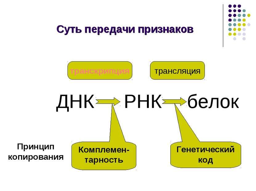 Суть передачи признаков ДНК РНК белок транскрипция трансляция Комплемен-тарно...