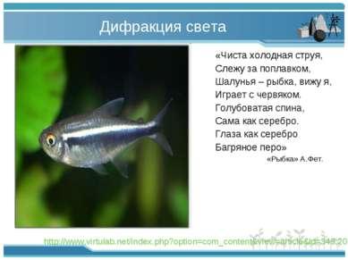 Дифракция света «Чиста холодная струя, Слежу за поплавком, Шалунья – рыбка, в...