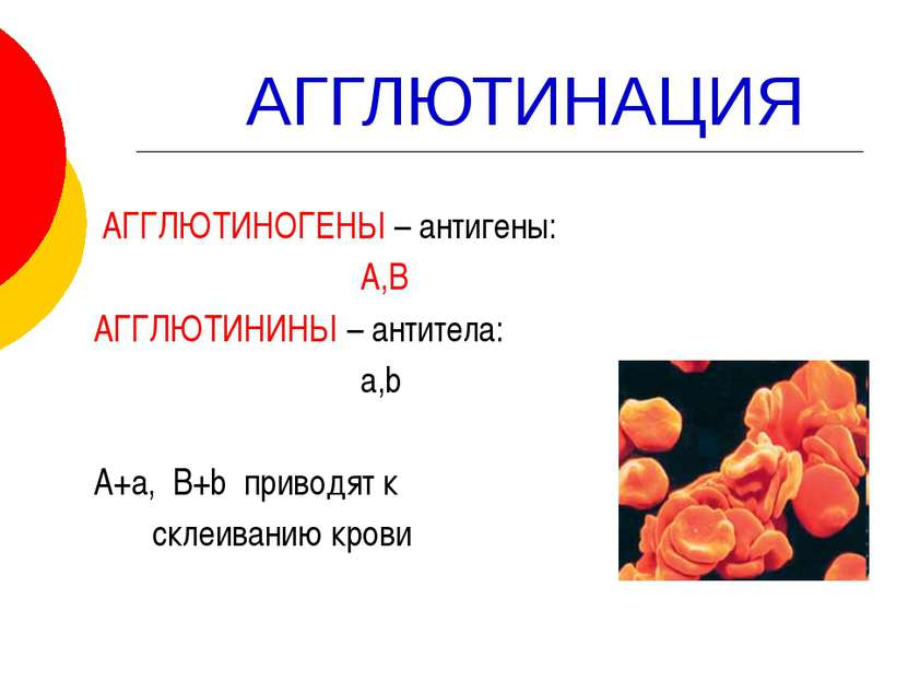 АГГЛЮТИНАЦИЯ АГГЛЮТИНОГЕНЫ – антигены: А,В АГГЛЮТИНИНЫ – антитела: a,b А+а, B...