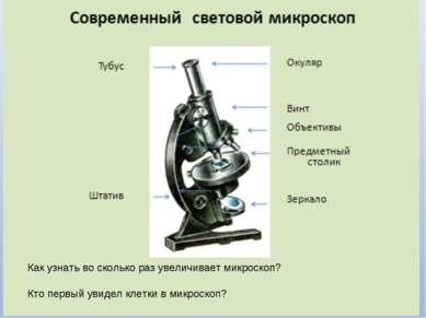 Как узнать во сколько раз увеличивает микроскоп? Кто первый увидел клетки в м...