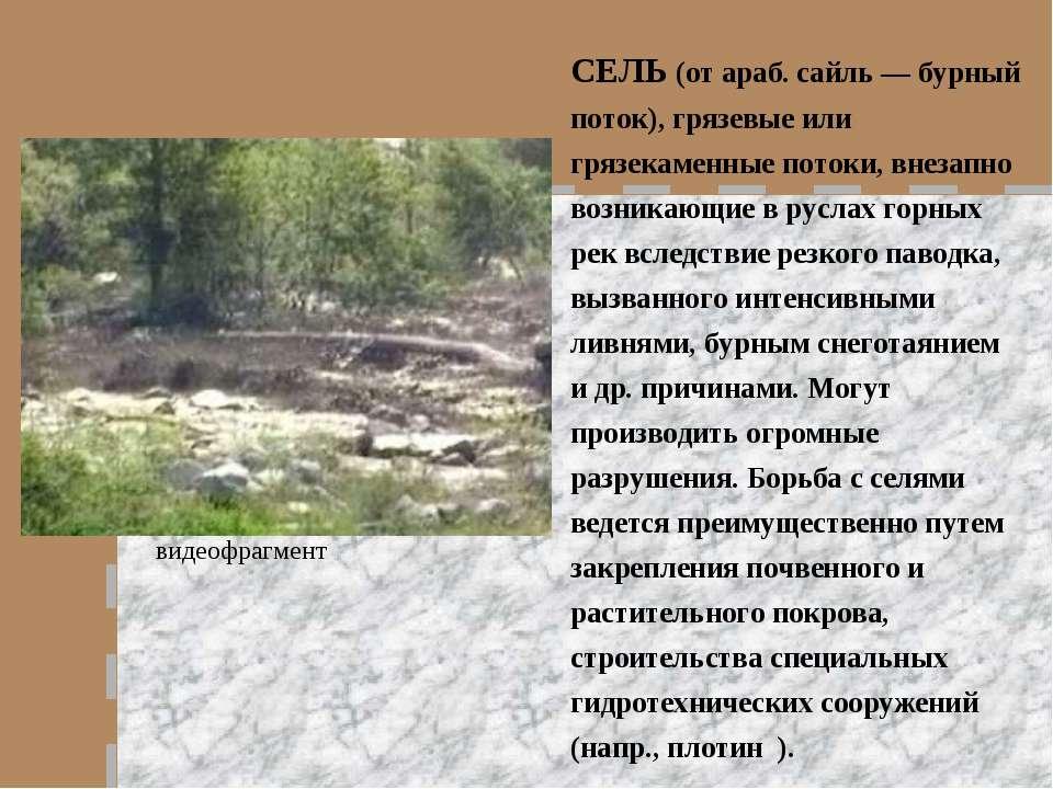 СЕЛЬ (от араб. сайль — бурный поток), грязевые или грязекаменные потоки, внез...