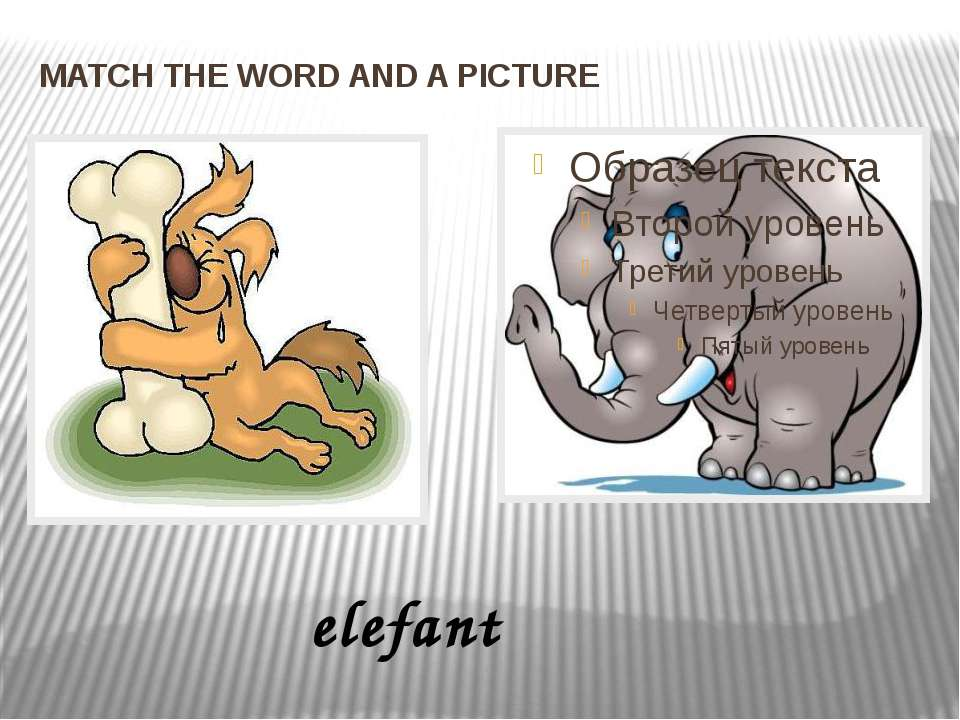 MATCH THE WORD AND A PICTURE elefant