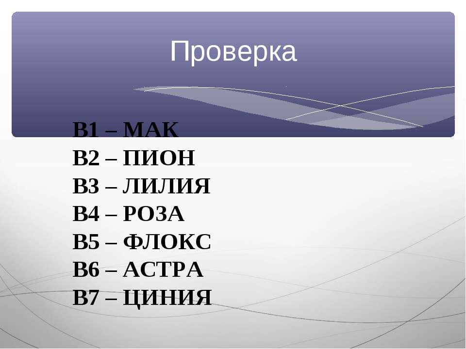 Проверка В1 – МАК В2 – ПИОН В3 – ЛИЛИЯ В4 – РОЗА В5 – ФЛОКС В6 – АСТРА В7 – Ц...
