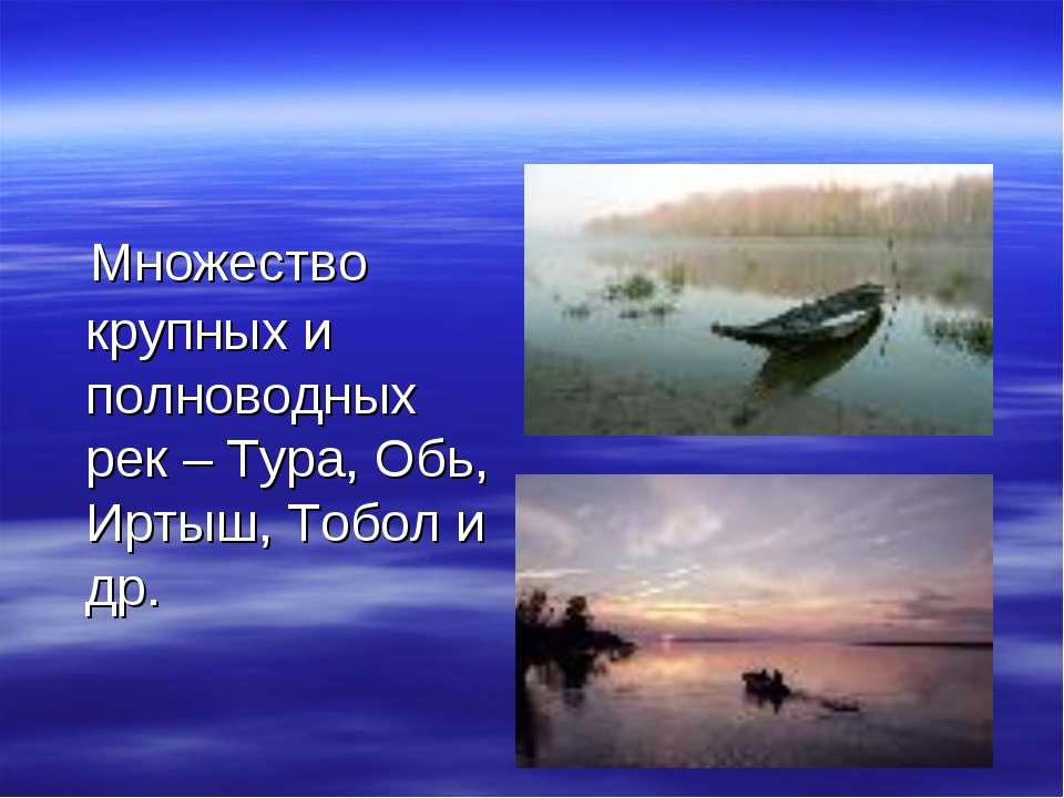 Множество крупных и полноводных рек – Тура, Обь, Иртыш, Тобол и др.