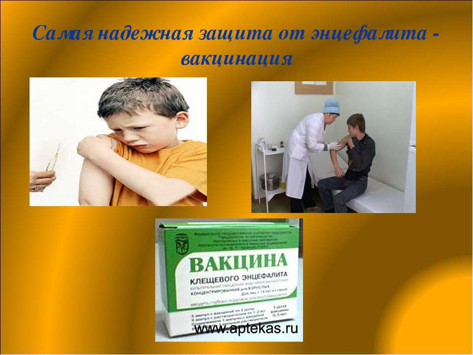 Самая надежная защита от энцефалита - вакцинация