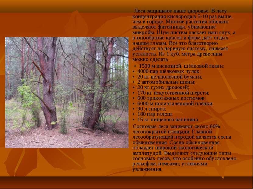 Леса защищают наше здоровье. В лесу концентрация кислорода в 5-10 раз выше, ч...