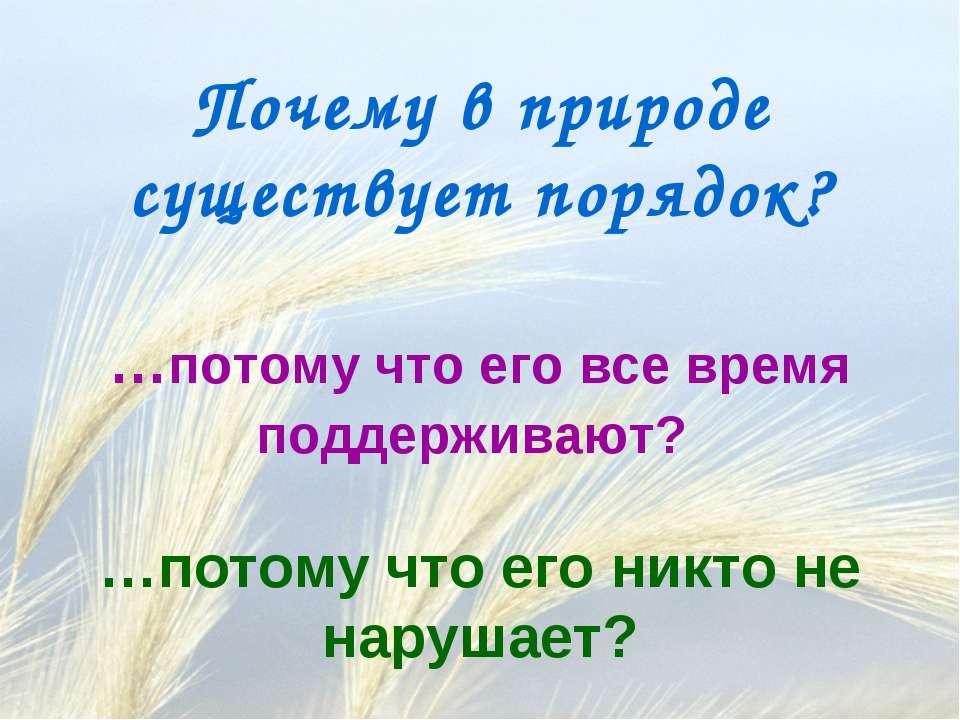 Почему в природе существует порядок? …потому что его все время поддерживают? ...