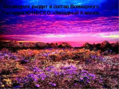 Заповедник входит в состав Всемирного Наследия ЮНЕСКО «Западный Кавказ».