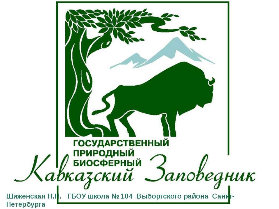 Шиженская Н.Н. ГБОУ школа № 104 Выборгского района Санкт-Петербурга