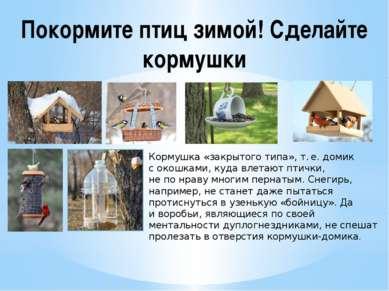 Покормите птиц зимой! Сделайте кормушки Кормушка «закрытого типа», т.е. доми...