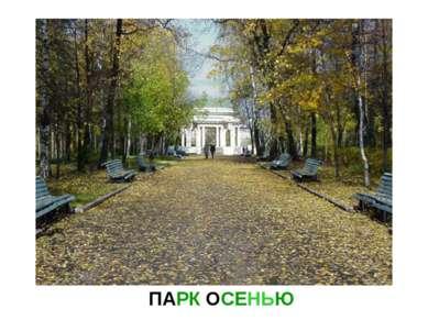 ПАРК ОСЕНЬЮ Парк осенью.