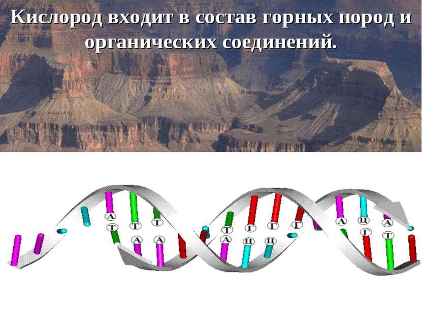 Кислород входит в состав горных пород и органических соединений.