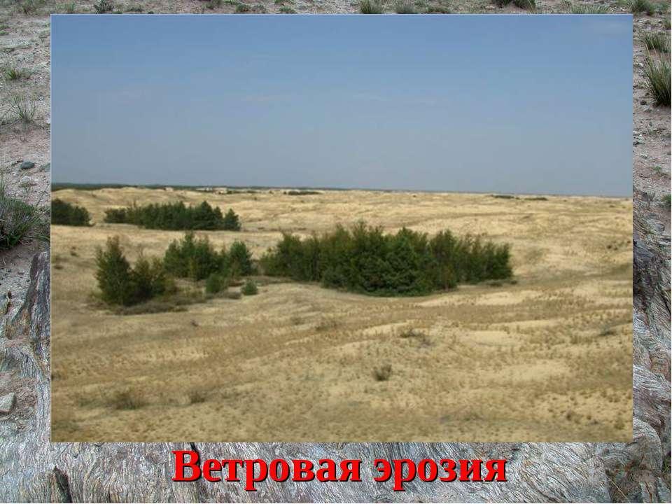 Что может уничтожить плодородные почвы? Ветровая эрозия
