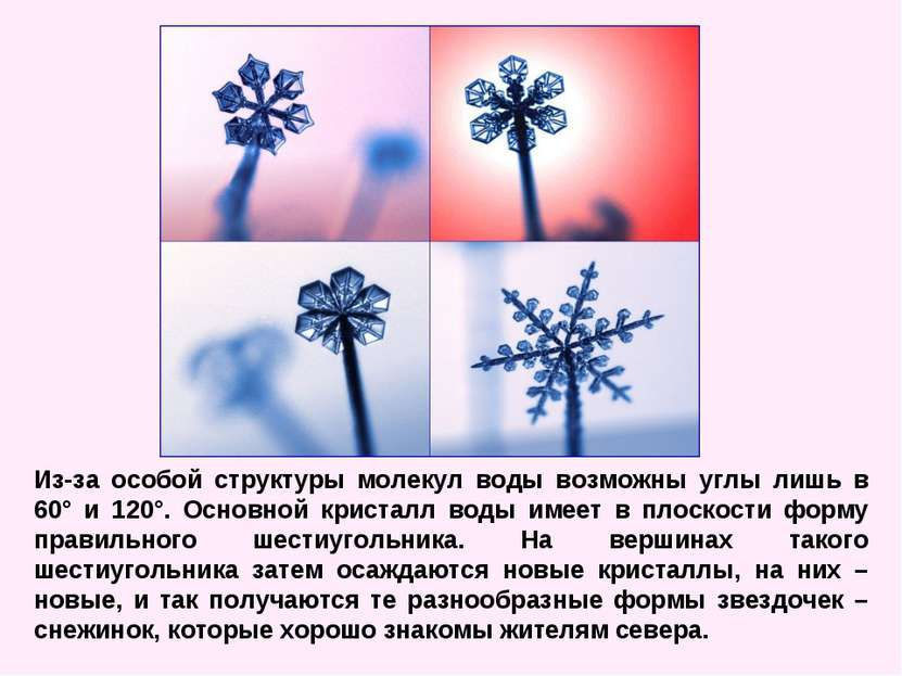 Из-за особой структуры молекул воды возможны углы лишь в 60° и 120°. Основной...