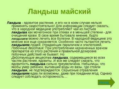 Ландыш майский Ландыш - ядовитое растение, и его ни в коем случае нельзя прим...