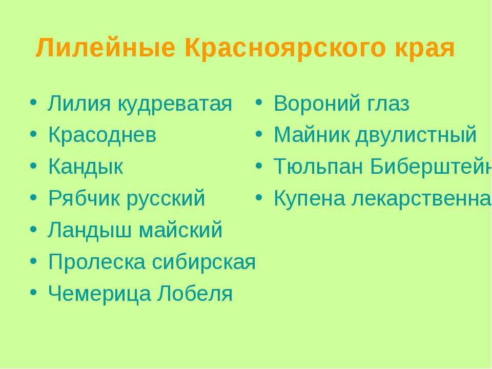 Лилейные Красноярского края Лилия кудреватая Красоднев Кандык Рябчик русский ...